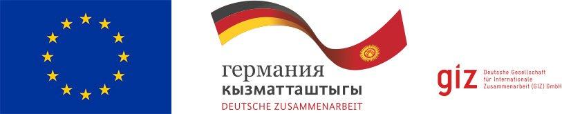 GIZ EU Logo