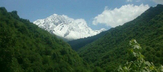 Kara-Alma Forest, Jalal-Abad Region, Kyrgyzstan