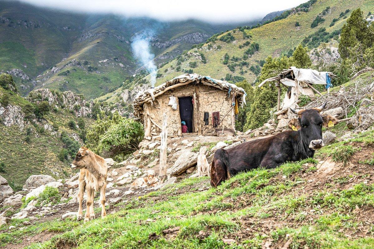 Arslanbob Mountain Sunset Trek, Shepherd's Hut - Jalal-Abad Region, Kyrgyzstan