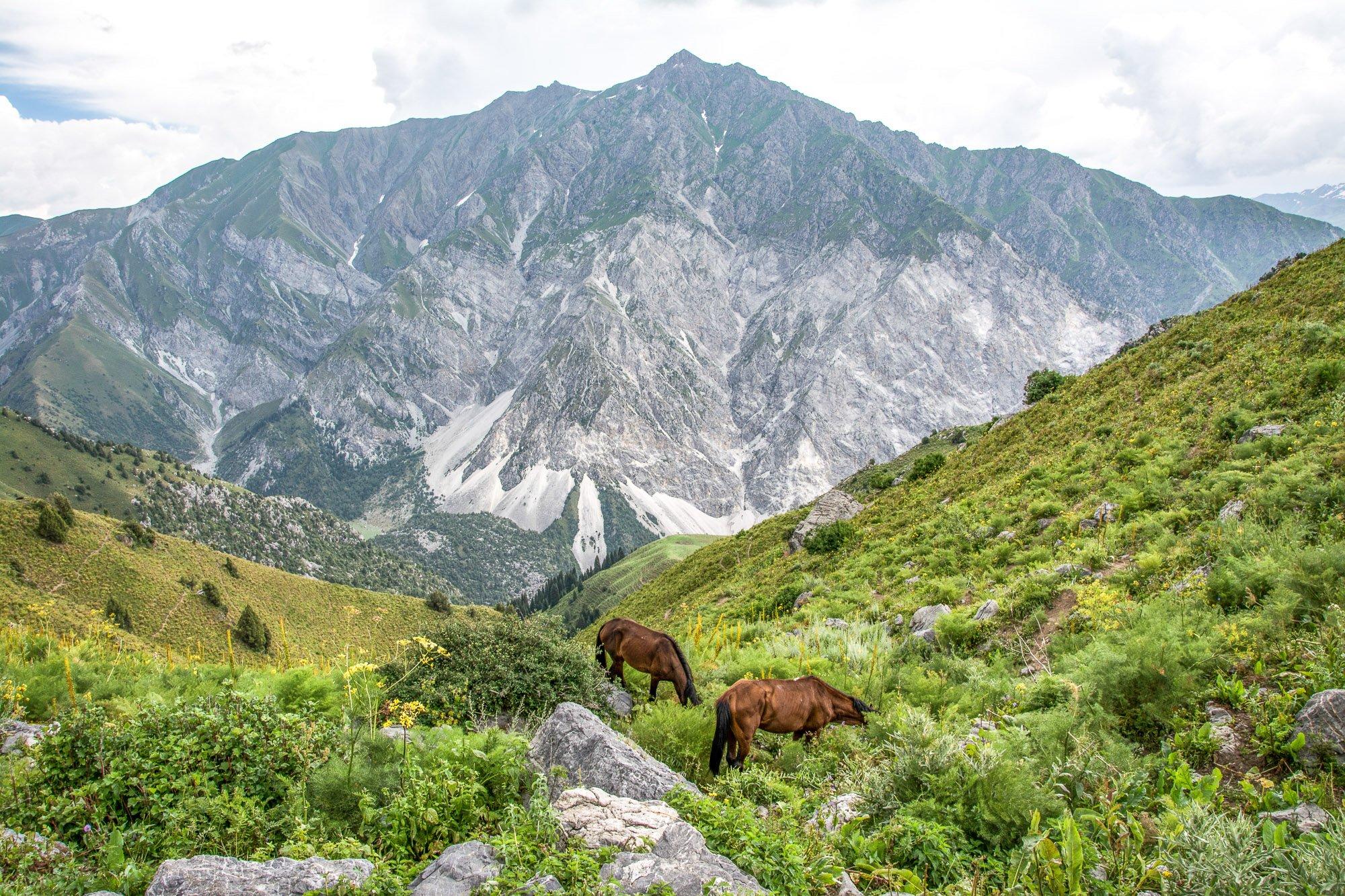 Exploring Sary-Chelek on Horseback Tour, Kotormo Pass - Jalal-Abad Region, Kyrgyzstan